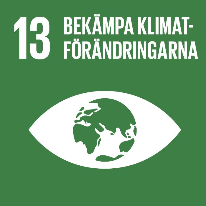 ikon för mål bekämpa klimatförändringarna. öga med jordglob mor grön grund.