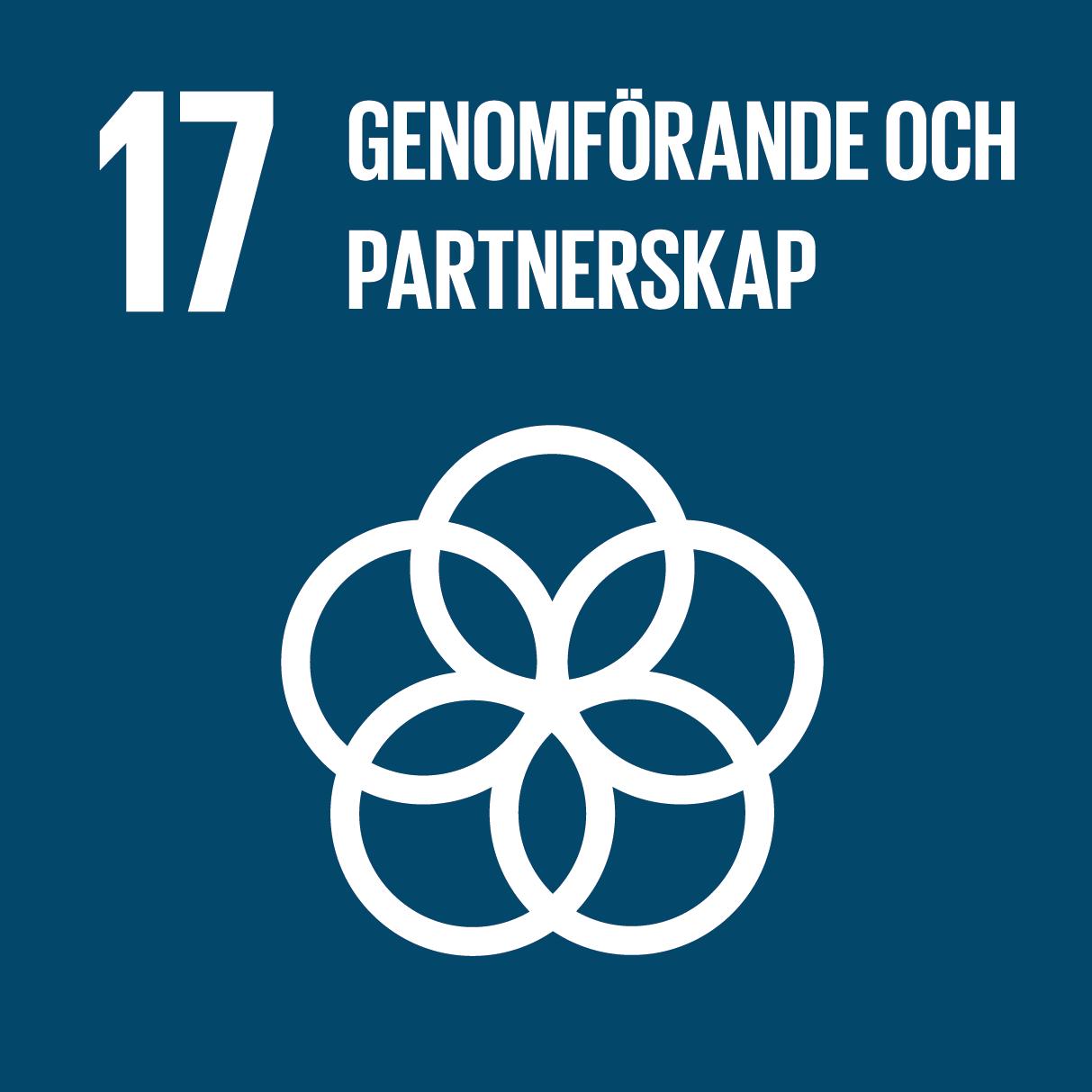 ikon för mål genomförande och globalt partnerskap. fem överlappande cirklar mot blå grund.